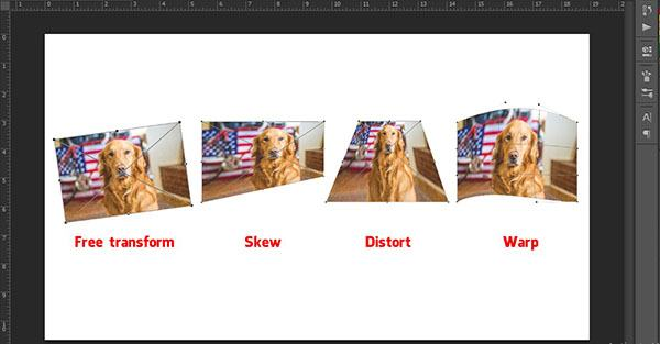 Thay đổi kích thước ảnh với công cụ Transform