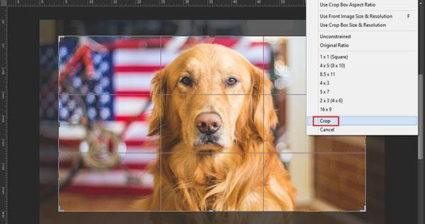 Thay đổi kích thước ảnh với công cụ Crop