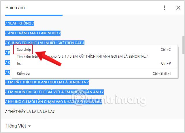 Sao chép rồi dán phụ đề ra Word hoặc Notepad để tiện sử dụng