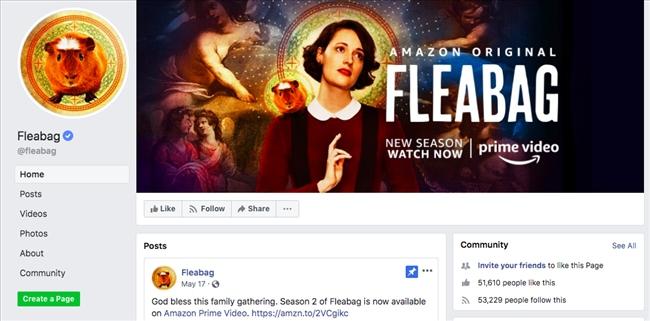 090959 group facebook fleabag