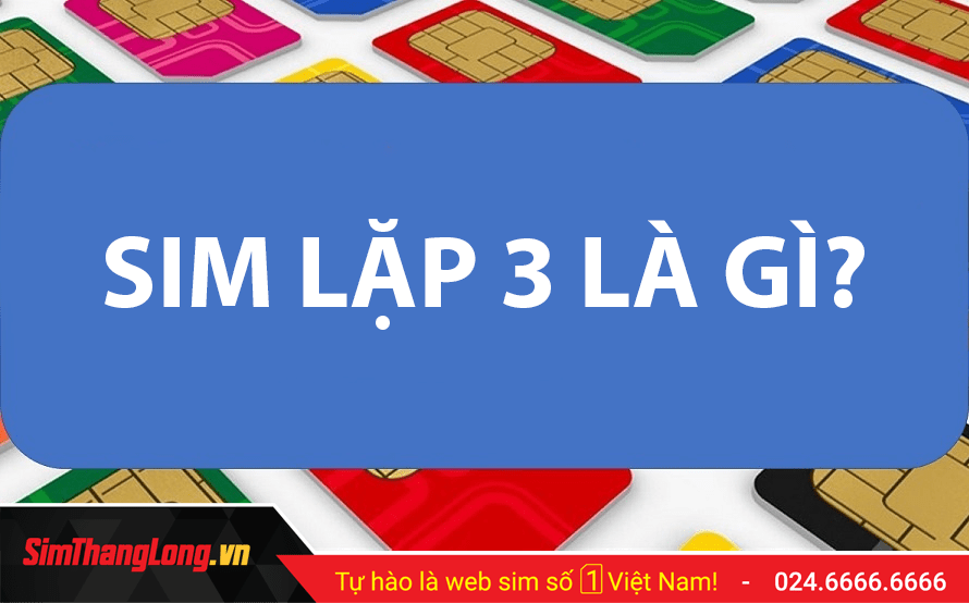 SIM-LAP-3
