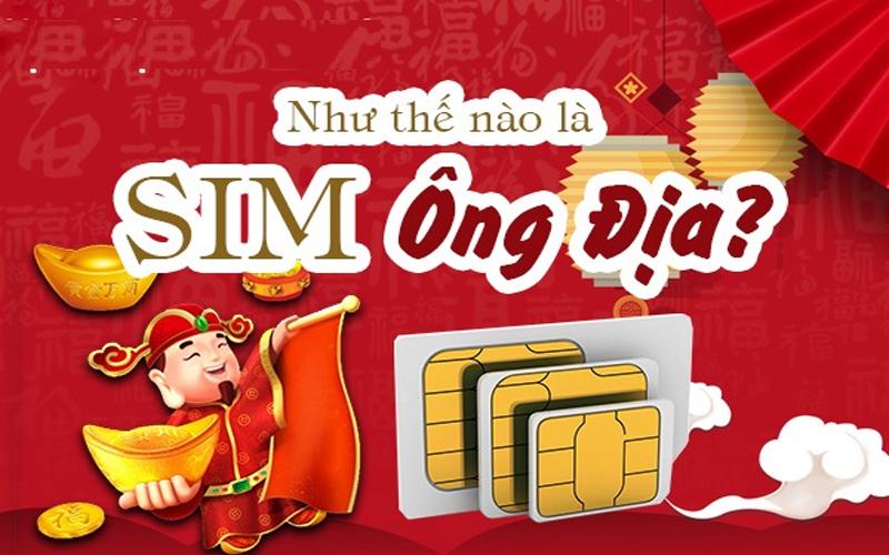 sim-ong-dia-1